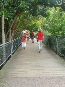Stories on foot.com Byron Bay boardwalk